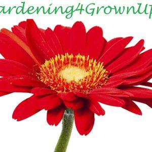 Gardening4GrownUps logo